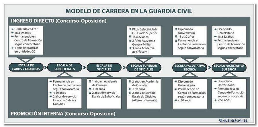 organigrama-oposiciones-a-guardia-civil